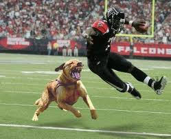 A dog gets his revenge on Michael Vick; our food animals get their revenge by giving us heart disease, diabetes and an early trip to the old nursing home.
